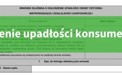 (Polski) Upadłość konsumencka 2016 – jak przebiega i ile kosztuje + wniosek o ogłoszenie upadłości – część 1